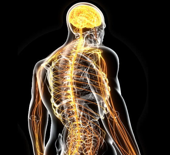 原因不明の痛み、コリ、痺れや慢性の疲労を改善するカイロプラクティックと整体、整骨院の骨格矯正(浜松市)