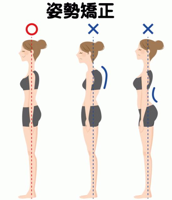 姿勢を矯正する!磐田市のカイロプラクティック、整体ならこちらがお薦めです。 骨盤、脊椎の悪い癖を取り除き、正しく綺麗な姿勢に整えます。 もみほぐし、マッサージ、整骨院、接骨院、などに行っても良くならない方は、一度お電話下さい。