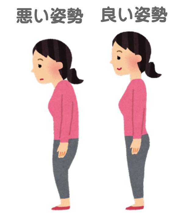 腰痛や肩凝りの原因になる、歪んだ姿勢を矯正することによって、姿勢を改善します。 綺麗な姿勢になrには、背骨、骨盤の矯正は、必ず必用です。 口コミで評判の浜松市西区のカイロプラクティック、整体では、痛みの無い方法で姿勢を治します。